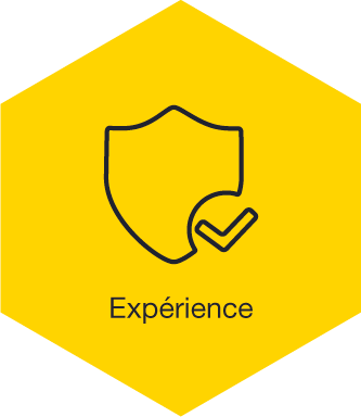 bt-experience